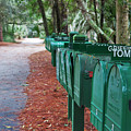 Row Of Green Mailboxes7426 by T Powell