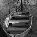 Rowboat And Tree by Michael L Kimble
