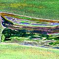 Rowboat Fluorescence 2 by Peter Paul Lividini