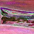 Rowboat Fluorescence 4 by Peter Paul Lividini