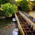 Rowers Under The Boston University Bridge by Joann Vitali