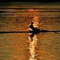 Rowing At Sunset 3 by Bill Cannon