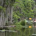 Rowing by Matthew Felder