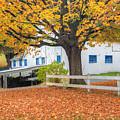 Roxbury Connecticut Barn by Bill Wakeley