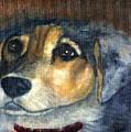 Roxie by Gail Kirtz