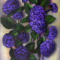 Royal Blue Hydrangea by Randy Burns