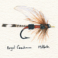 Royal Coachman by Marsha Karle