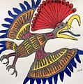 Royal Flycatcher- Mayan 2 by Graham Wallwork