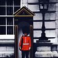 Royal Guard by Ronald Irwin