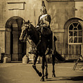 Royal Horseguard, London, Uk. by Nigel Dudson