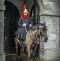 Royal Horseguard In London by Peter Hayward Photographer