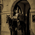 Royal Horse Guard, London, Uk. by Nigel Dudson
