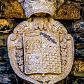 Royal Insignea by Roberta Bragan
