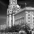 Royal Liver Buildings_beatle Country by Rob Lester