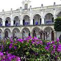 Royal Palace Old Antigua by Kurt Van Wagner