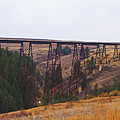 Rr Trestle Spans Lawyer's Canyon by Mike and Sharon Mathews