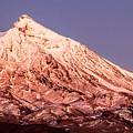 Ruapehu Eastern Summit by Nicholas Blackwell