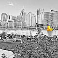 Rubber Duck - Pittsburgh, Pennsylvania by Thomas Krappweis