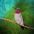 Ruby Throated Hummingbird by Betty LaRue