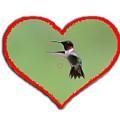 Ruby-throated Hummingbird In Heart by Dan Friend