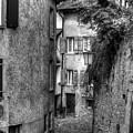 Rue Des Moulins by Tara Schendel