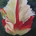 Ruffled Tulip  by Zoe Powell