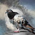 Ruffled Feathers by Cyndy Doty
