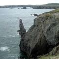 Rugged Coastline  by Barbara Griffin