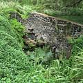 Ruins At Hamakua Sugar Cane Landing by Pamela Walton