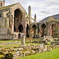 Ruins. Melrose Abbey. by Elena Perelman