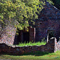 Ruins Of The Cherokee Gold Assayers Office by Frank Wilson