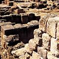Ruins Of Zippori by Thomas R Fletcher