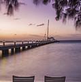 Rum Point Beach Chairs At Dusk by Adam Romanowicz