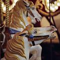 Runaway Horses by Ayesha  Lakes