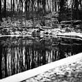Runeberg's Fountain by Toni Rantanen