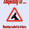 Running Bigstock Donkey 171252860 by Mitchell Watrous