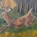 Running Buck by Judy Jones
