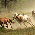 Running Horses by Scott Read