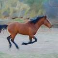 Running Wild Stallion by Susan Westervelt