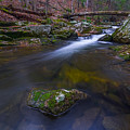 Runoff by Lechmoore Simms