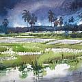 Rural Bengal 5 by Alaykumar Ghoshal