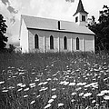 Rural Church In Field Of Daisies by H. Armstrong Roberts/ClassicStock