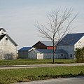 Rural Farm Central Il by Thomas Woolworth