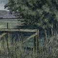 Rural Fence by David King