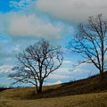 Rural Landscape - Skyline Drive by Arlane Crump