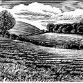 Rural Landscape, Woodcut by Gary Hincks