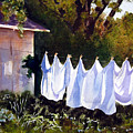 Rural Laundromat by Marsha Elliott