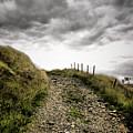 Rural Path by Kelly Jenkins