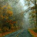 Rural Road In North Carolina With Autumn Colors by Jill Battaglia
