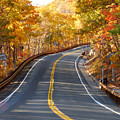 Rural Road Running Along The Maple Trees In Autumn 2 by Jeelan Clark